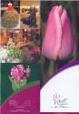 Villa des Fleurs - فيلا دي فلورز