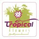 Tropical Flowers - تروبيكال للزهور